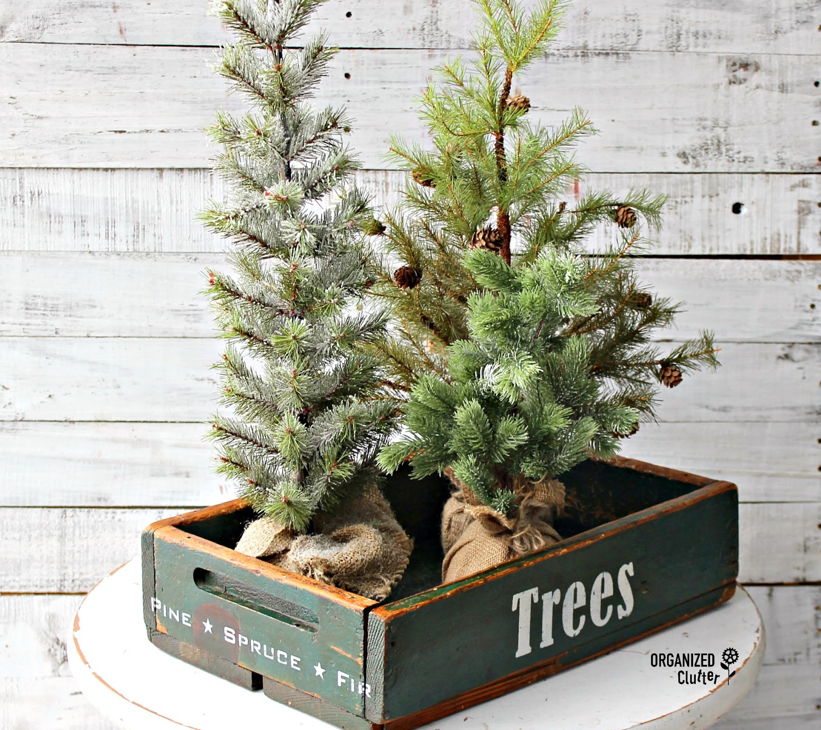 Mini Christmas Trees in a sign crate by Organized Clutter, featured on Funky Junk Interiors