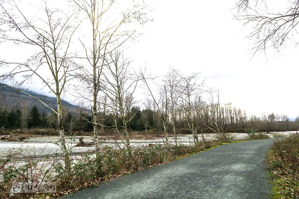 Smooth, gravel trails along the Vedder River Rotary Trail in Chilliwack, British Columbia, Canada