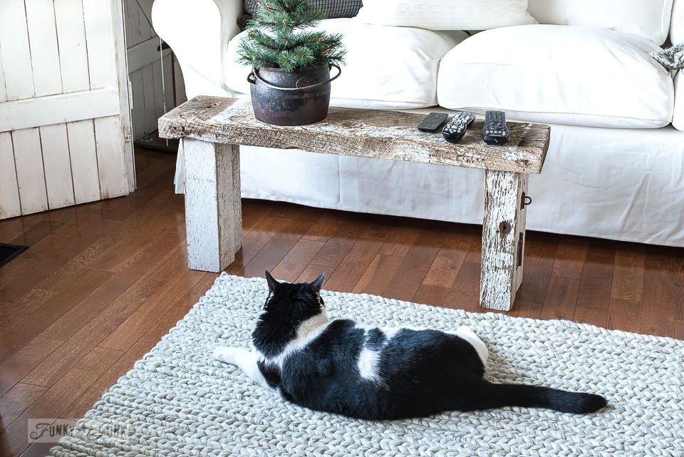 Do cats leave the Ikea Ektorp sofas alone? Learn what I use to stop the cat scratching on furniture.