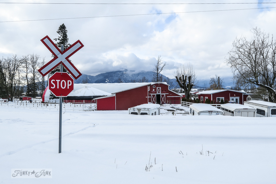 Vibrant barn reds against the white snow at the Vedder River Rotary Trail in Chilliwack, BC Canada.