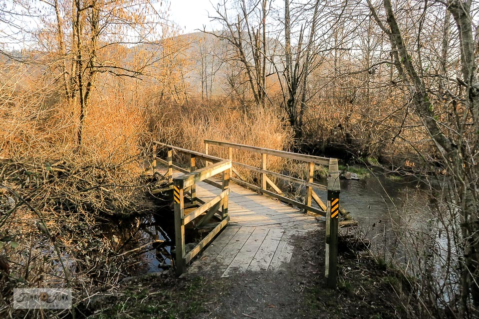 Rustic bridge crossings over rivers and creeks in winter at the Vedder River Rotary Trail in Chilliwack, BC Canada
