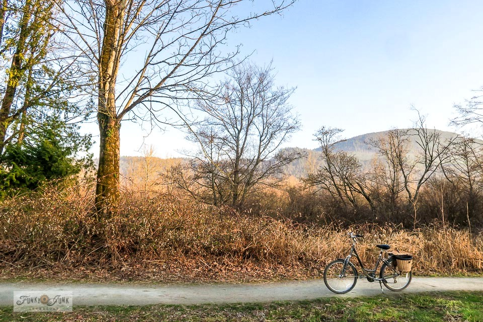 Take this pretty photo tour of the Vedder River Rotary Trail in Chilliwack, BC via bike with a goodbye to winter and hello to spring in full force!