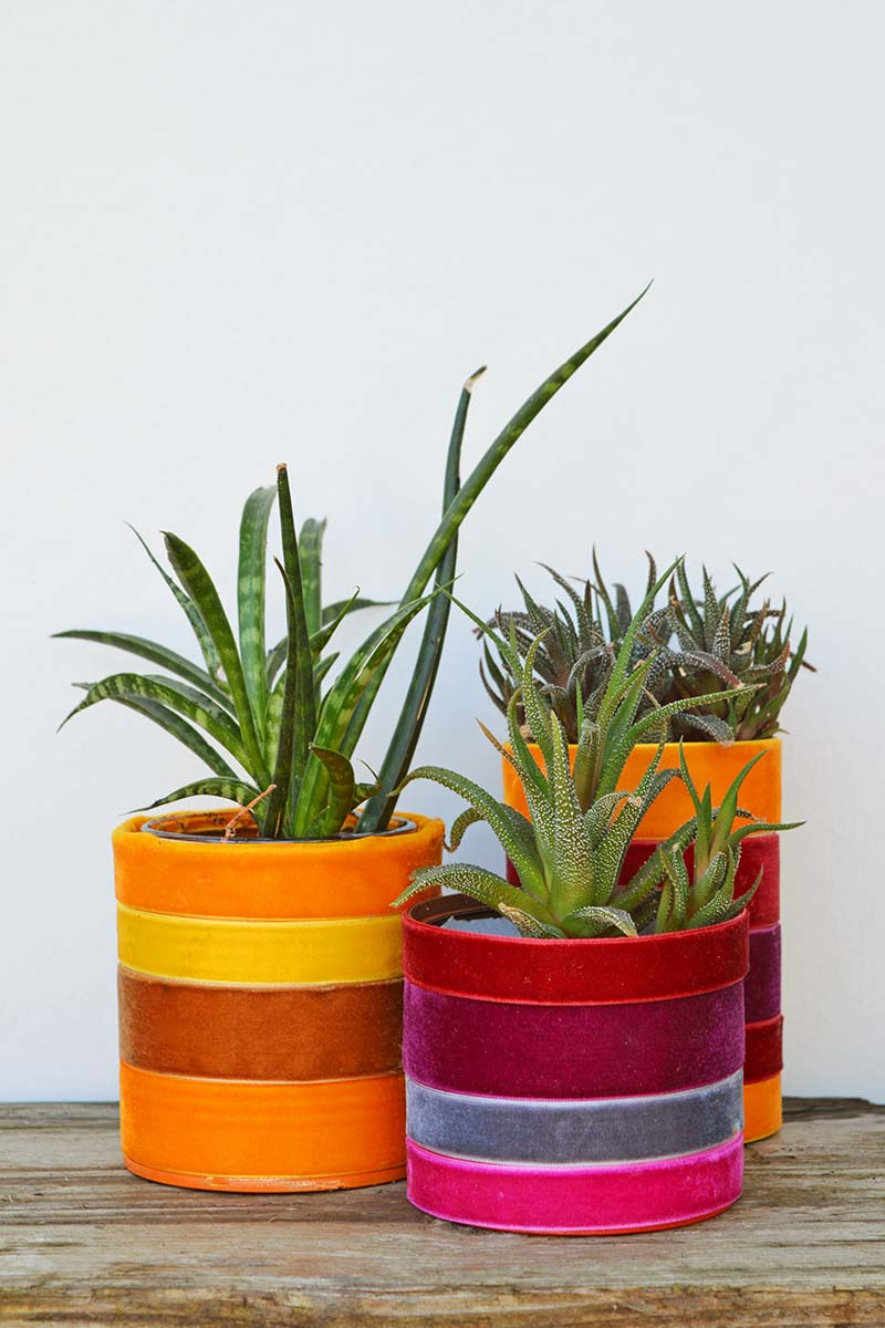 Boho tin can velvet ribbon planters by Pillar Box Blue, featured on Funky Junk Interiors