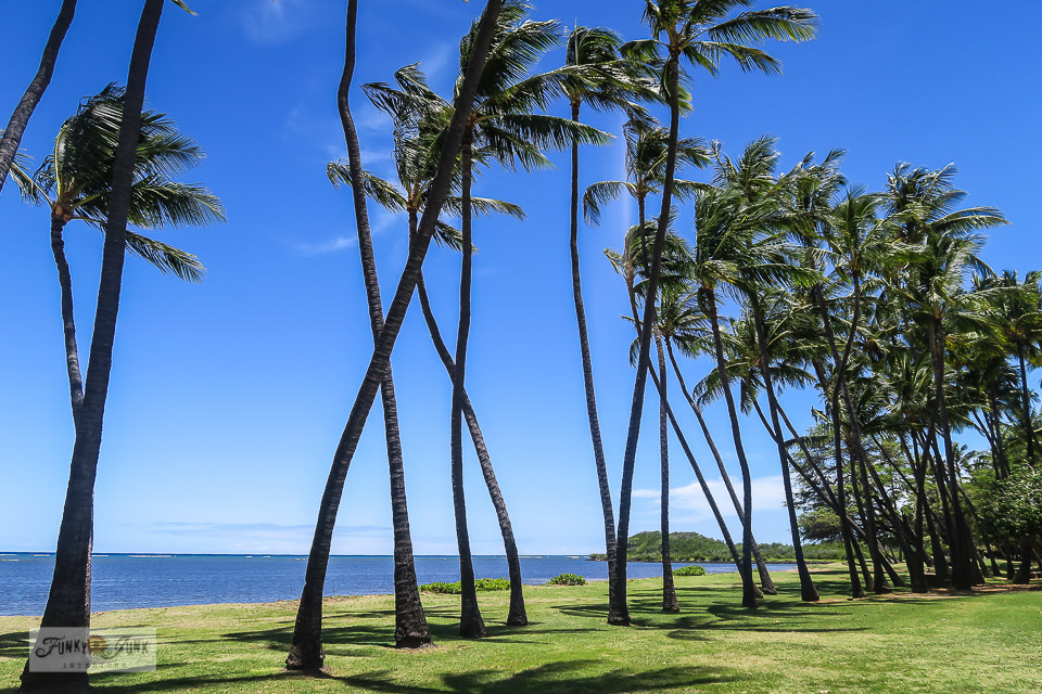A tropical beach park on Molokai