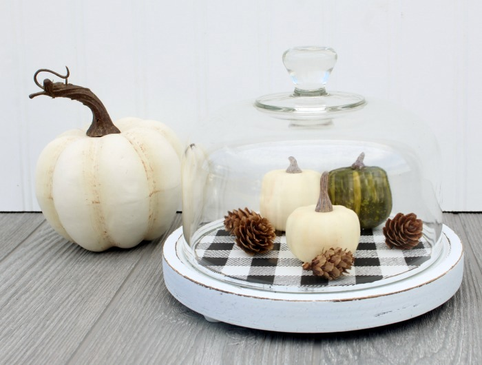 Buffalo checked cheese cloche pumpkin patch by Knick of Time, featured on Funky Junk Interiors