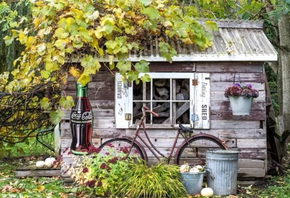 rustic garden shed during fall