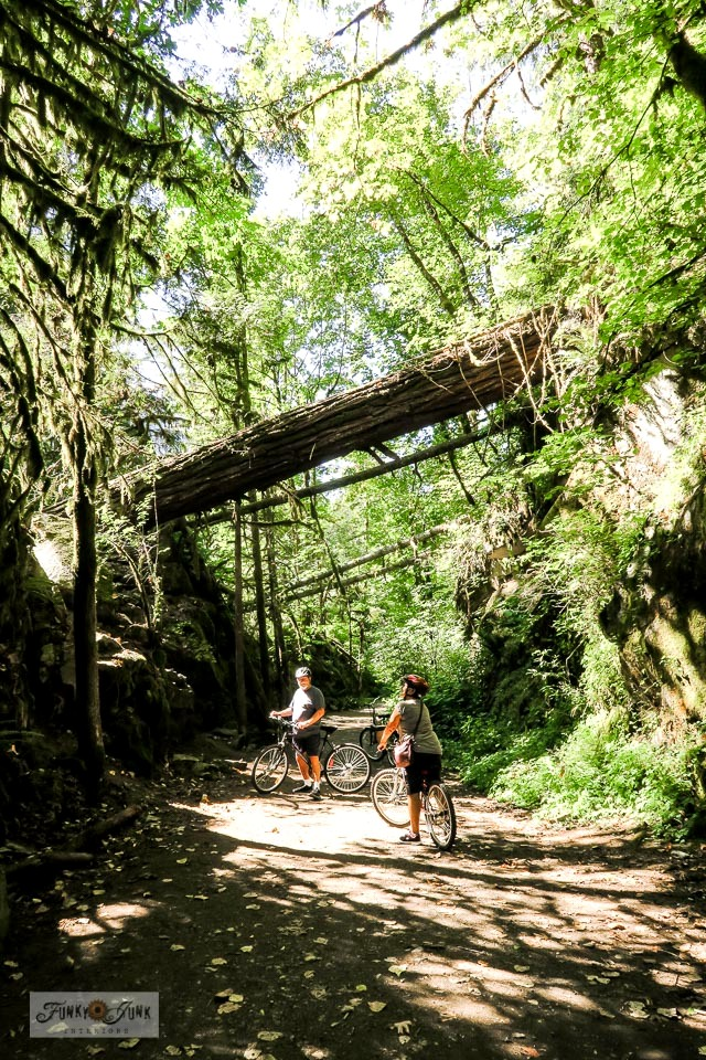 Take a stunning bike ride down the beautiful Kettle Valley Railway Trail at the Othello Tunnels in Hope, BC Canada! Very easy to navigate, and be sure to go all the way through Thacker Regional Park. Video clips included. #funkyjunkinteriors #othellotunnels #kettlevalleyrailway #travel #britishcolumbia
