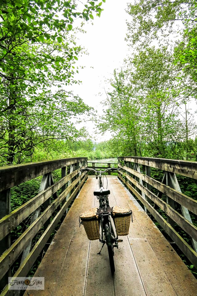 A Vedder River Rotary Trail bike ride adventure on a rustic bridge - visit post for the full tour! #bc #canada #travel #bikes #trails