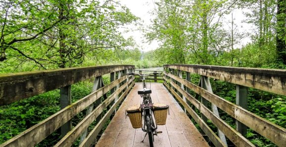 Vedder River Rotary Trail bike ride during spring