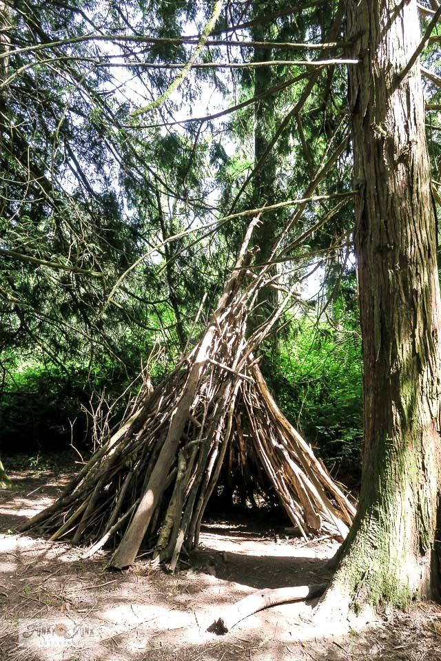 A rustic branch teepee in the forest along the Vedder River Rotary Trail during a trail bike ride. #bc #trails #teepee #forest