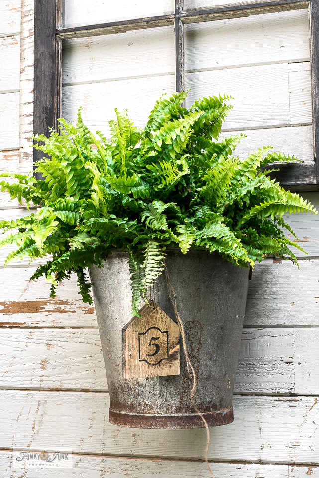 A fern inside a rusty galvanized bucket becomes an easy window box replacement when hung from an old vintage window! Add a wooden tag number for extra charm! Click for full tutorial. #planters #ferns #buckets #gardening #windowbox