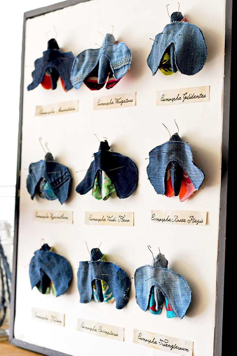 Fun faux framed moth taxidermy by Pillar Box Blue, featured on DIY Salvaged Junk Projects 535 on Funky Junk!