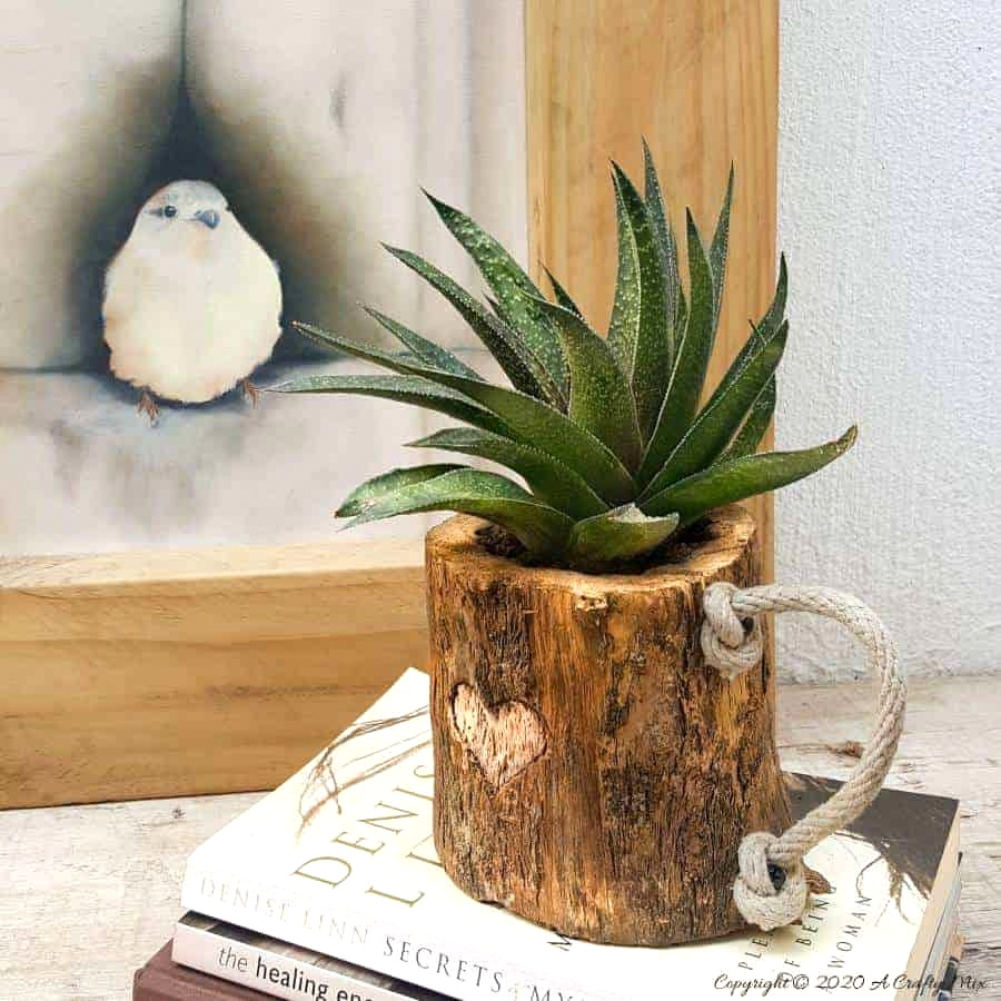 Branch mug planter by A Crafty Mix, featured on DIY Salvaged Junk Projects 542 on Funky Junk!