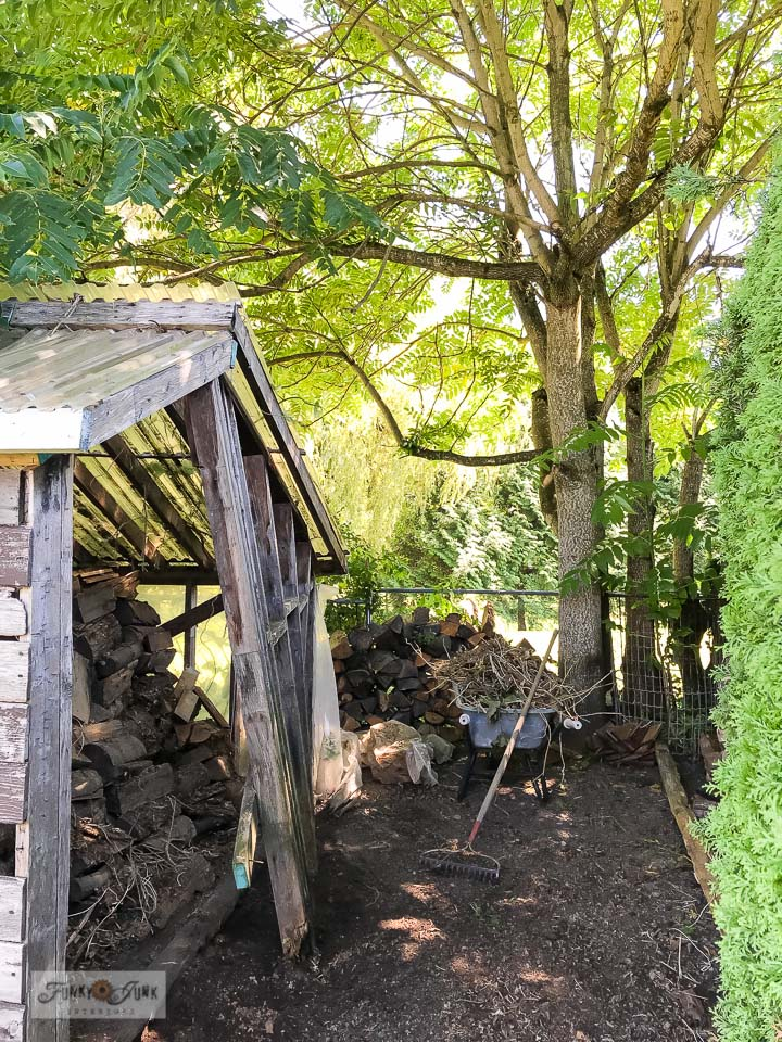 Repairing the rustic garden shed with demo tips. Desire to save a shed too? Here's how I'm doing it! Click for full story loaded with helpful demo tips! #shed #sheshed #demoday #gardenshed
