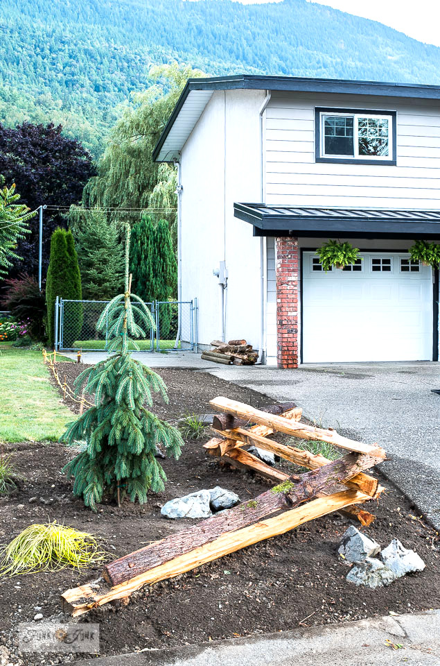 Creating a split rail fence garden with weeping evergreen and grass plants for a true forest feel! This post includes how to plan, install a fence, and what to plant! Click to read full instructions. #gardening #fence #splitrailfence #flowerbed #evergreens