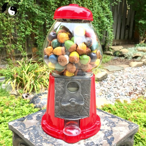 Acorn gumballs by Birdz of a Feather, featured on DIY Salvaged Junk Projects 543 on Funky Junk!