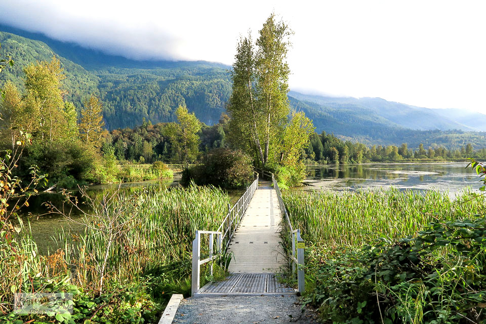 Take a tour of Cheam Lake Wetlands Regional Park, located in Chilliwack, BC! Perfect for bike trail riding and walking. Includes a floating boardwalk and viewing platform, loaded with nature trails. Click to see photos and take a video tour!
