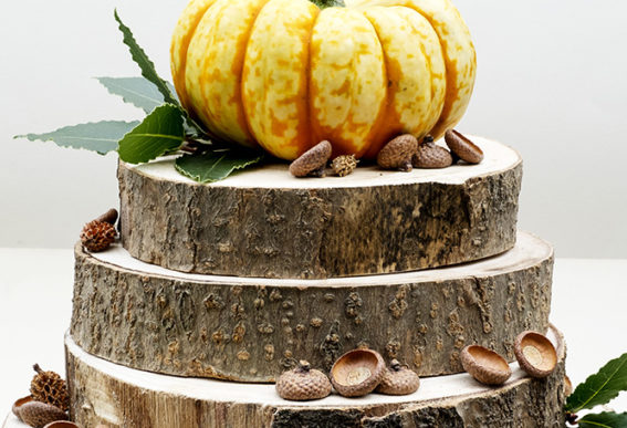 Rustic autumn wood cake art by Elsa R Blog