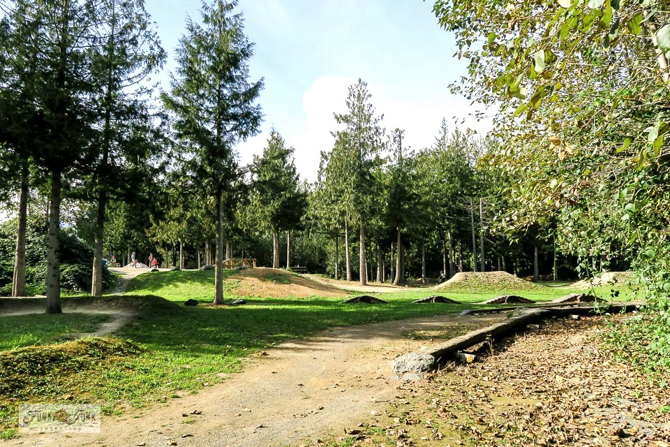 Take a tour of Island 22 Regional Park, located in Chilliwack, BC! Perfect for biking, walking, a beach, off-leash dog park, obstacle bike course, equestrian trails and more! Click to see pictures and a video tour!