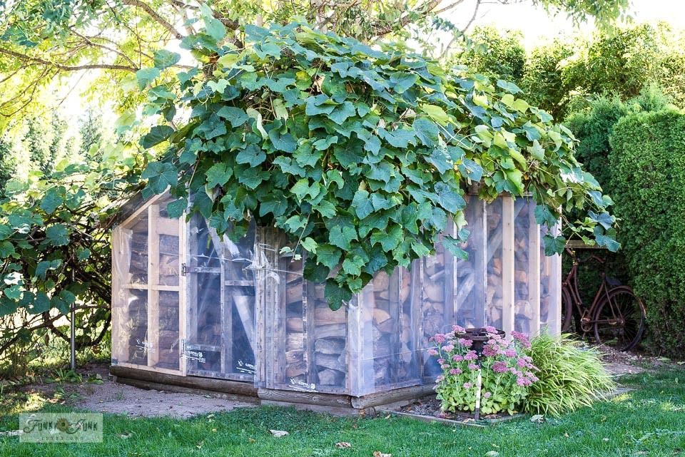 How to weather-roof a shed by adding green house plastic to the framework! Click to full tutorial and see how it was sided in reclaimed wood right after!