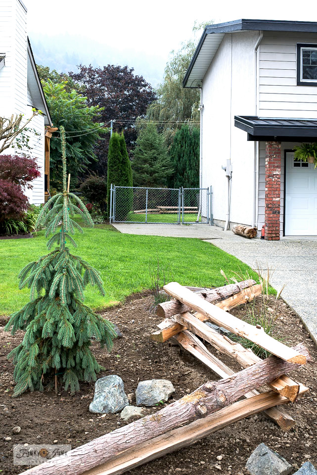 How to start a new lawn from seed with epic lawn care supplies