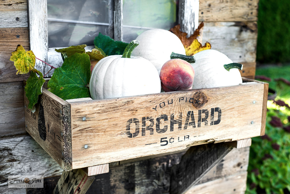 How to decorate a fall rustic shed with crate window box filled with white pumpkins and fall directional signs stenciled with Funky Junk's Old Sign Stencils. Click to the full tour and full tutorials plus a helpful video!