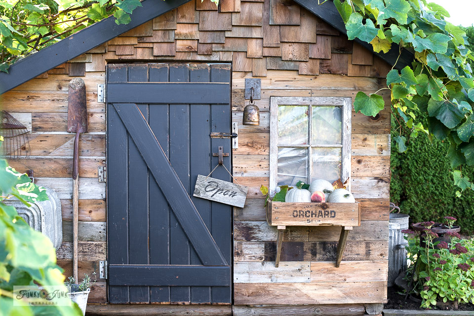 Fall rustic shed with crate window box and directional signs by Funky Junk Interiors