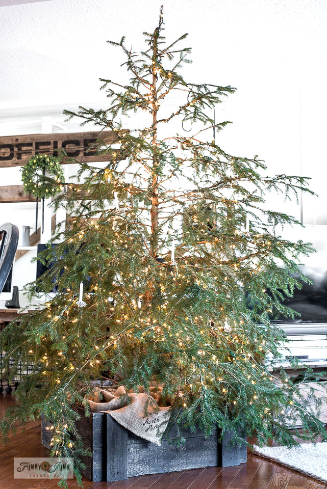 A natural untrimmed rustic Christmas tree inside a DIY tree crate, part of a Christmas living room home tour!