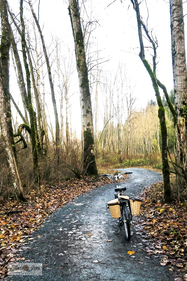 A moody winter trail bike ride down the Vedder River Rotary Trail during January.