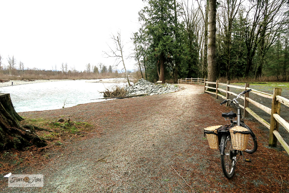 A split rail fence along the Vedder River Rotary Trail in front of Vedder River Campground.