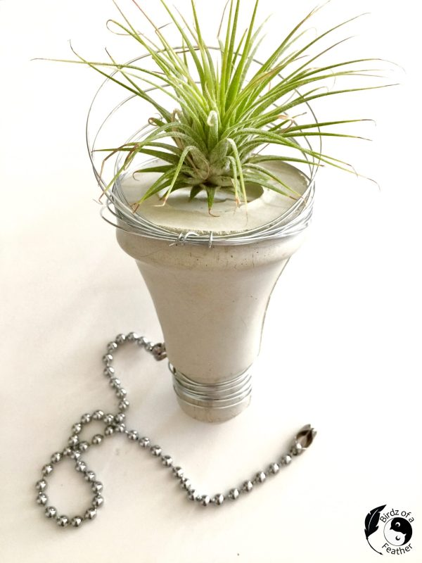 Cement lightbulb planter by Birdz of a Feather, featured on DIY Salvaged Junk Projects 566 on Funky Junk!