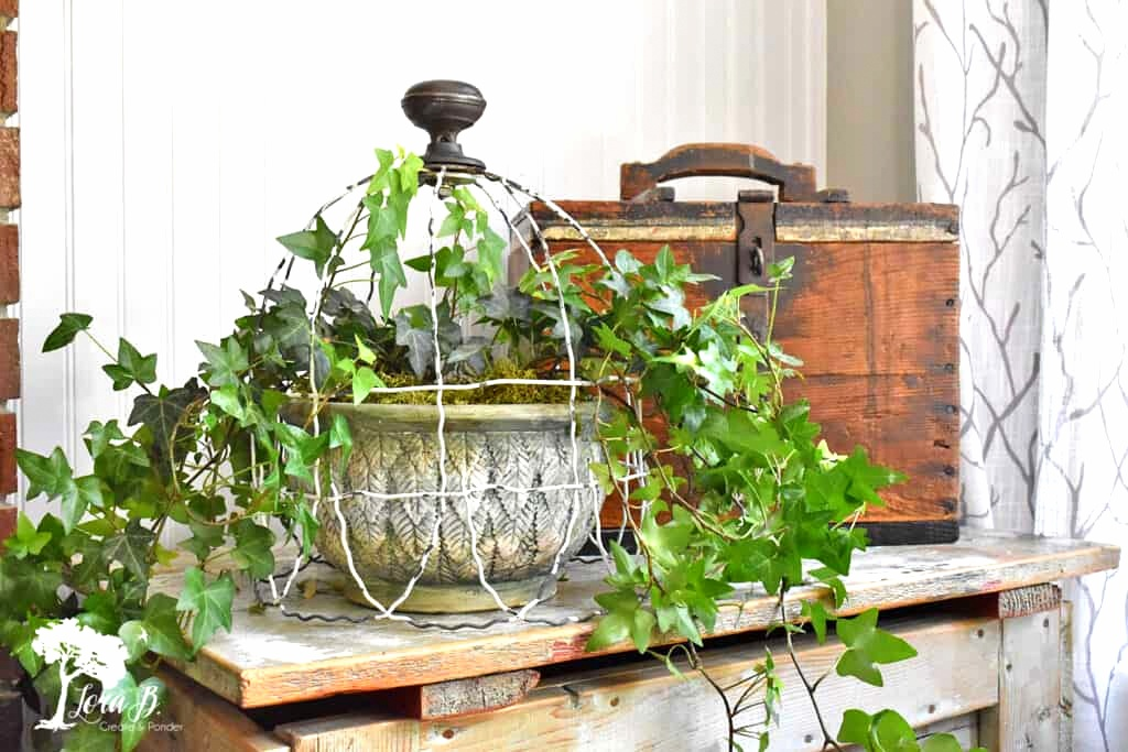 Garden fencing cloche by Lora B, featured on New Upcycled Projects To Make 578 on Funky Junk!