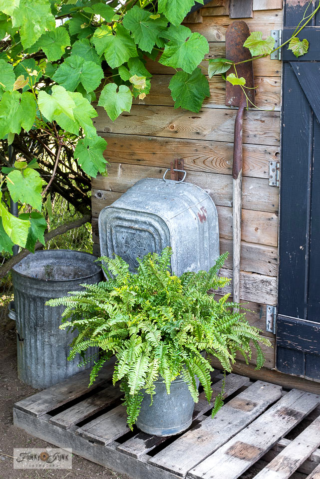 Galvanized buckets and tubs create the perfect planters. Visit this post to see how!