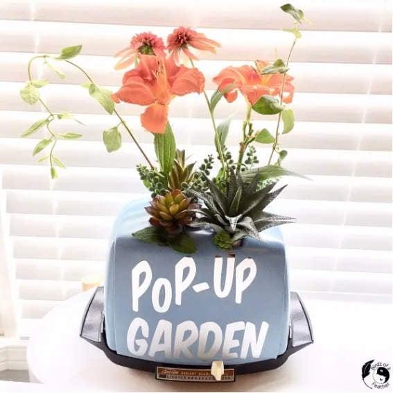 Toaster pop up garden