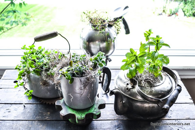 Learn how to plant old kettles to become wonderfully unique junk garden planters! Click to read full tutorial.
